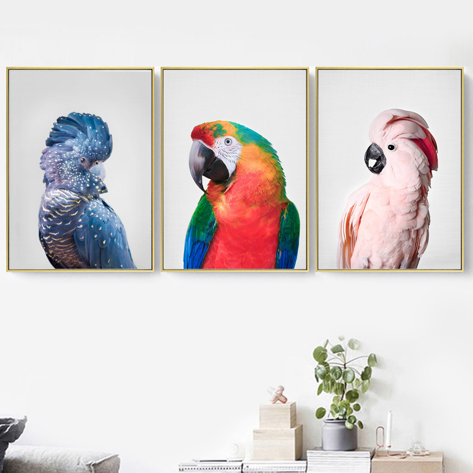 ColorfulBoy Feather Parrot Wall Art Canvas Painting Animal Nordic Posters And Prints Salon Canvas Pictures For Living Room Bar in Painting Calligraphy from Home Garden