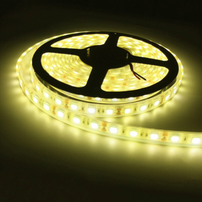 LED Strip 5050 IP68 Waterproof DC12V 60LED/M Outdoors LED Lighting Underwater For Swimming Pool Fish Tank Pond Fountain Bathroom