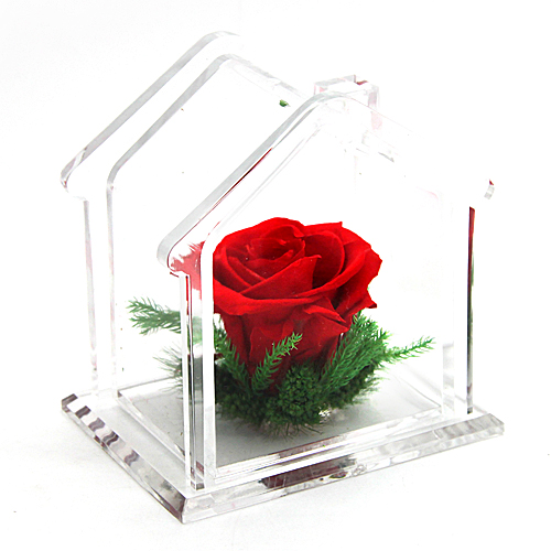 Fresh Flowers Vacuum Romantic Rose Birthday Present Gift Girlfriend Gifts Girls
