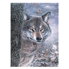 Diy Canvas Painting For Wall Decoration,Painting By Number 40x50cm,Wolf,Paint Kits Adults