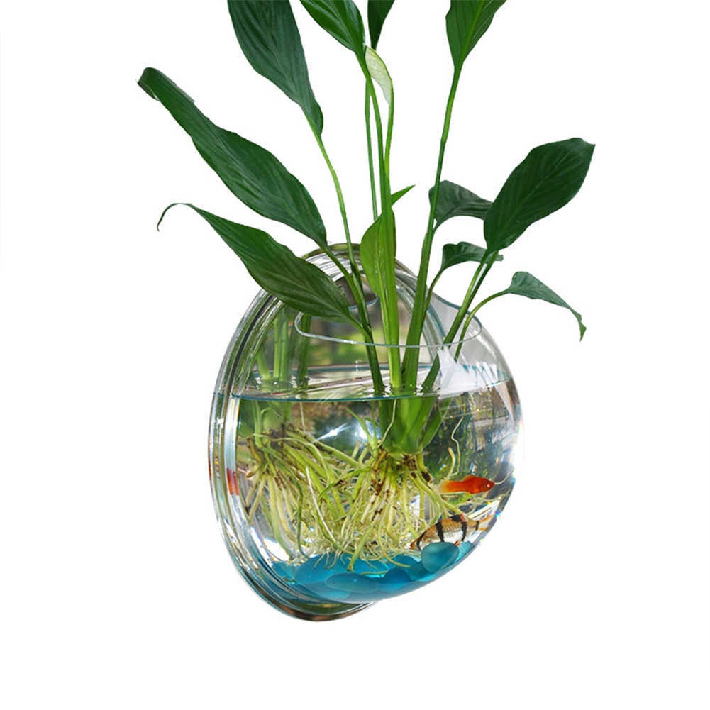 Compare prices on fish tank betta online shopping buy low for Fish bowl plants