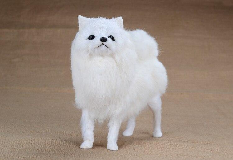 simulation white dog model ,21x20cm Pomeranian ,plastic&furs Pomeranian toy handicraft, Xmas gift w5716