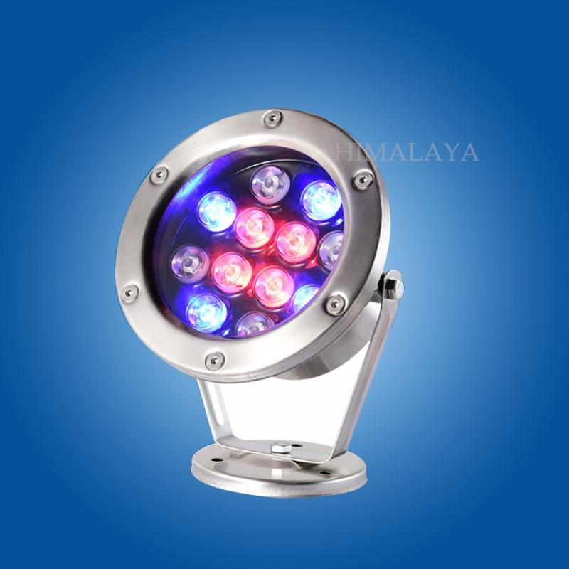 Toika 10pcs DC24V 3w 6w 9w12w18w24w36w LED underwater light lamp fountain lamp led swimming pool light