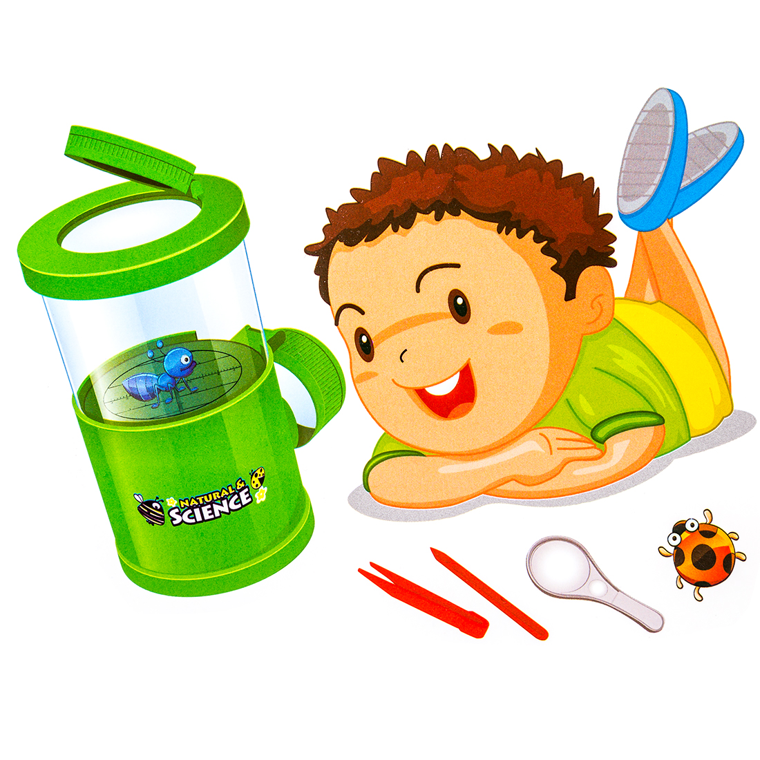 Children Toy Insect Viewer Scientific Exploration