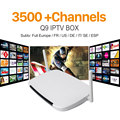 Q9 Android Iptv Set Top Box Android Media Player Con Europa árabe Iptv Apk Canal Subtv Cuenta 3400 + Cielo Deporte Canales de IPTV
