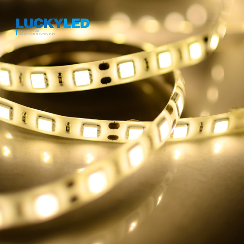 LUCKYLED Bandă LED impermeabilă IP45 3528 5050 SMD 60LED / M DC12V LED flexibilă albă alb cald alb verde roșu albastru galben 5m / rolă