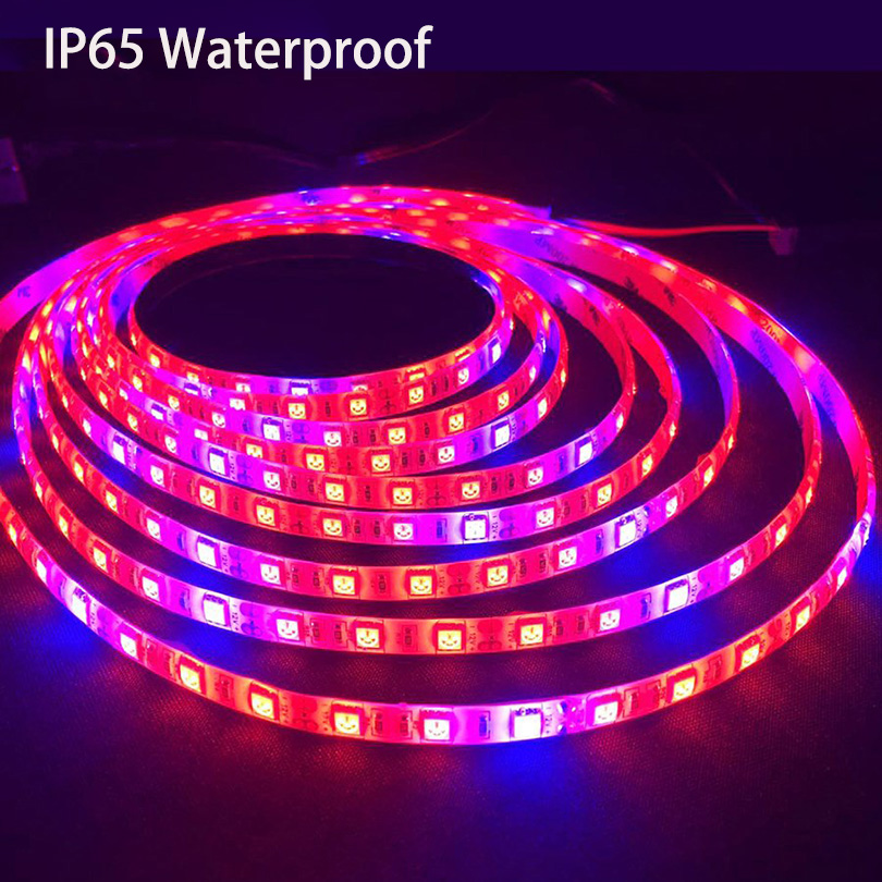 Купить с кэшбэком SMD5050 LED Phyto Lamps Grow Lights 1M 2M 3M 4M 5M LED Plant Growth Strip Light Set with Adapter for Greenhouse Hydroponic plant