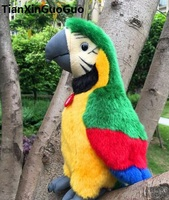 new arrival about 26cm colourful green parrot bird plush toy soft doll birthday gift w0901