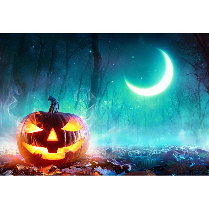 Photography Backdrops Props Halloween day Moon Pumpkin theme Photo Background HA-261 allenjoy background for photo studio full moon spider black cat pumpkin halloween backdrop newborn original design fantasy props