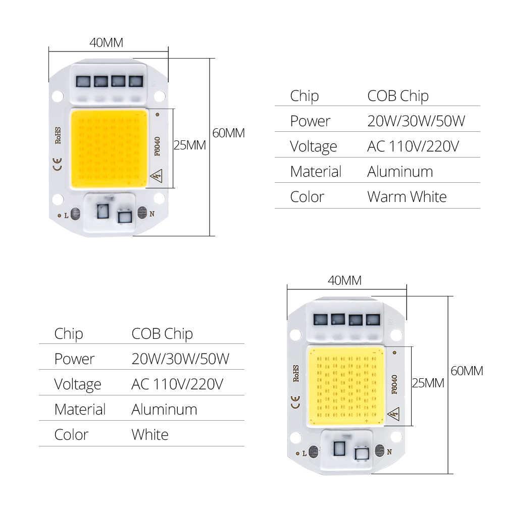 20W 30W 50W wysokiej mocy zintegrowany COB Chip lampy 110V 220V LED z matrycą reflektor DIY światło halogenowe na świeżym powietrzu LED Lampada doprowadziły koraliki chip
