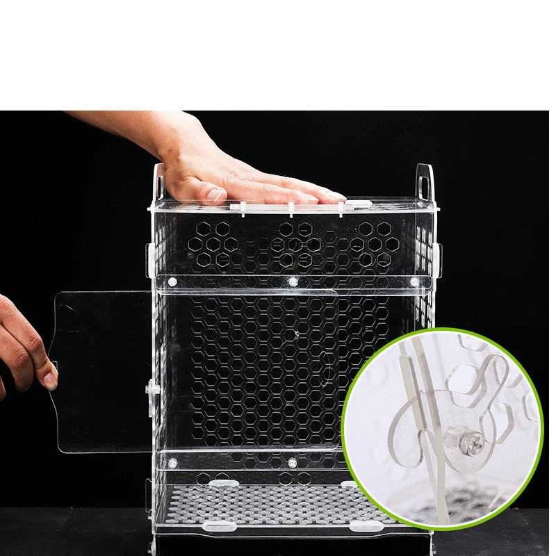 1 pièces cage à oiseaux pour animaux de compagnie cage d'élevage de perroquet peau de tigre pivoine nuage acacia oiseau petite cage à oiseaux en acrylique AP11261526 - 3