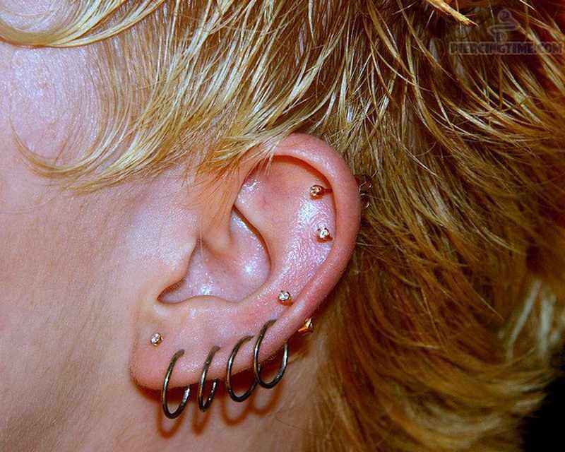 G23titan Rosa Color Oro Setto Anelli G23 Titanio Aperto Piccolo Orecchini Donna Uomo Ear Nose Piercing Gioielli