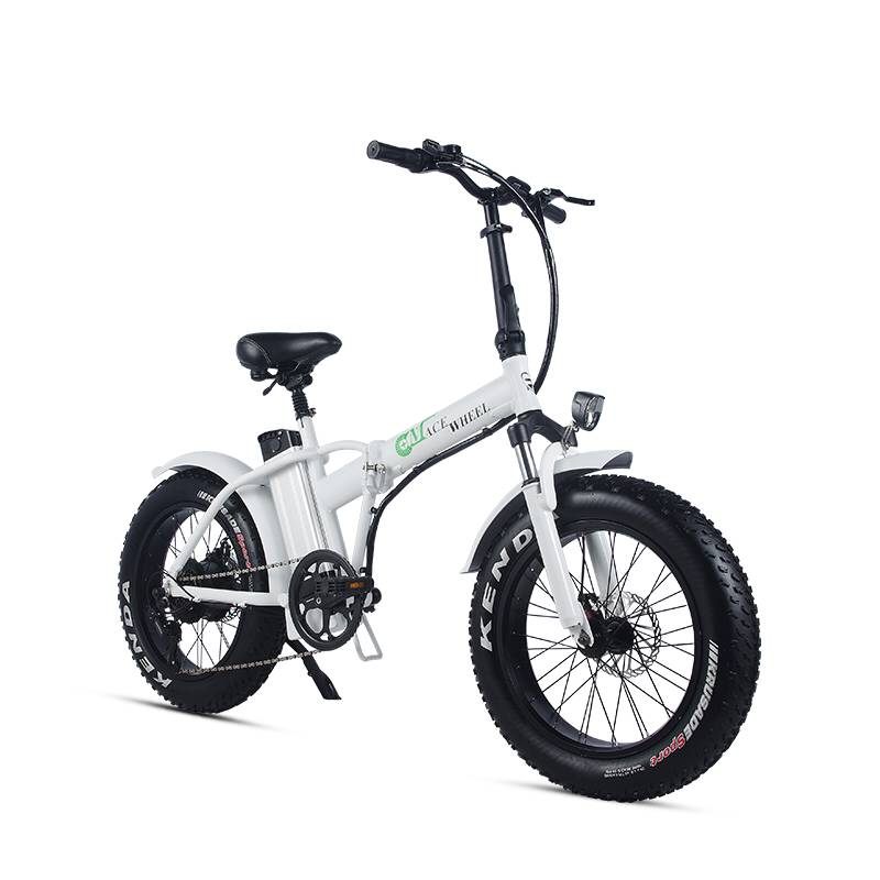20inch electric mountian bicycle 48V 15ah lithium battery 500w rear wheel motor max speed 40km/h range 50 60km snow fat