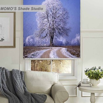 MOMO Christmas Roller Blinds Blackout Design Window Blinds Painting Curtains Roller Shades Fabric Custom Size PRB set512