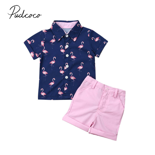a00824de62df 2019 Children Summer Clothing 2PCS Set Toddler Kid Baby Boy Flamingo Tops T- shirt+