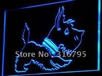 I850 Old Fashioned Scottie Dog Loja LED Sign Neon Light On/Off Switch 20 + Cores 5 Tamanhos