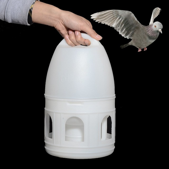 19x32cm White Plastic Pet Bird Drinker 6L With Handle For Pigeons Birds Water Kettle Pot Pet Birds Feeding Tools Pigeons Product