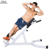 New Fitness Equipment Strength Training Extension Hyperextension Back Exercise Benchs Gym Roman Chair
