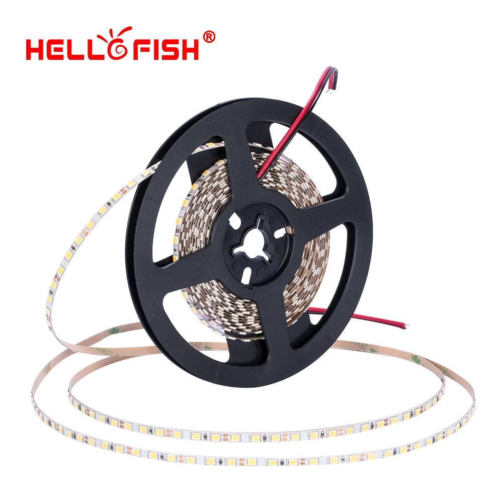 4mm 2835 led diode strip light DC 12V flexible light stripe 5m 600 LED tape lights & lighting 120 led/M Hello Fish