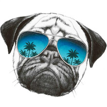 Fashion PVC Patch deal with it Clothes sunglasses dog Heat Transfer Printing T s