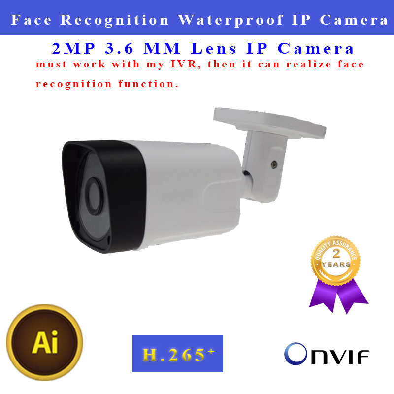 IP Camera Face Recognition 1080P 3.6mm Lens Infrared Support Onvif Outdoor Waterproof Bullet Camera For Security Camera System