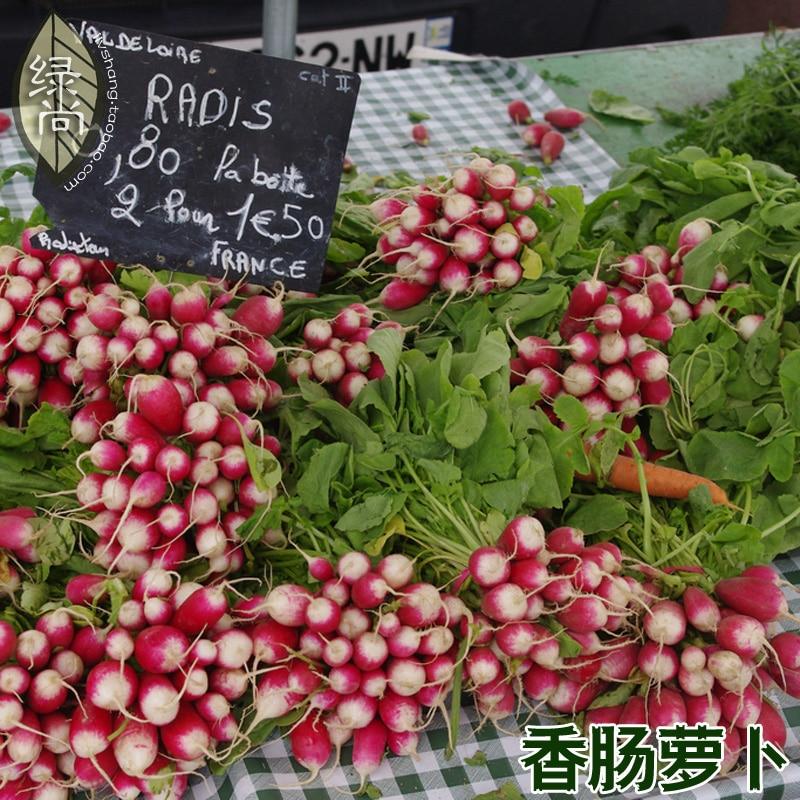 Колбаса маленькая Редька фрукты Редька 4 сезона завод садовый овощи, выращиваемые в горшках на балконе bonsais 10 шт.