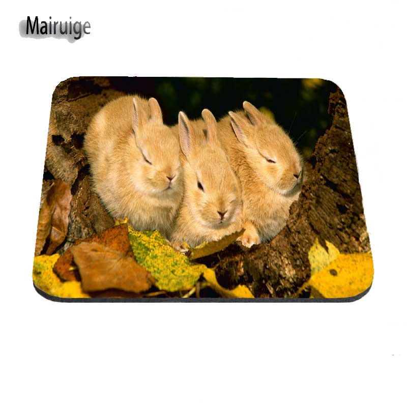 Deer Leave Custom MousePad for Size 18*22cm and 25*29cm And 25*20cm Support for Desktop for PC Optical Mouse Gaming Mat