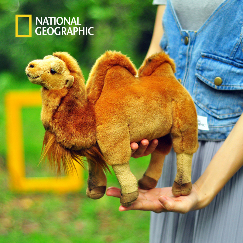 National Geographic Cute 23CM Height Plush Toy For Kids Baby Standing bactrian Camel Stuffed Animal Doll Soft Educational ocean creatures plush crab cushion doll cute stuffed simulative toys for baby kids birthdays gifts 27 23cm 10 5 9