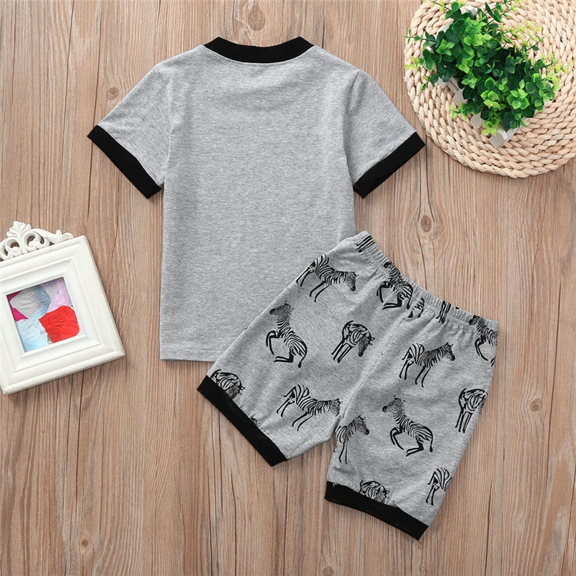 526a3ec31d7bd 2PCS Summer Baby Clothes Baby Girl Sets Infant Toddler Kids Baby Boy Girls  Animal Zebra Print Tops+Shorts Set Clothes JE12#F-in Clothing Sets from  Mother ...