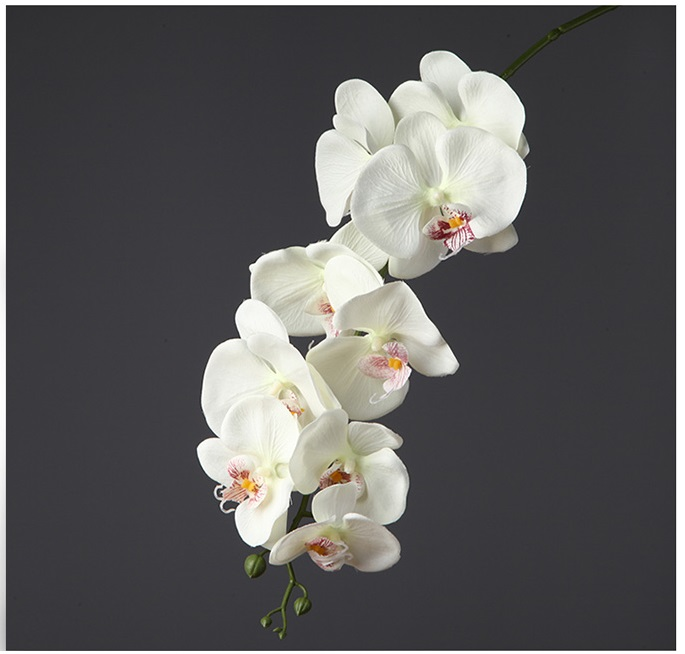 Orquideas artificiales para fiestas promocion for Orquideas artificiales