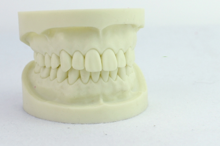 1pc Dental Full-mouth standard dental model Tooth Teach Dental Equipment 28 teeth close to the normal tooth hardness dental materials tooth pathology dissection model decayed tooth oral dental teaching model normal tooth gasen rzkq006