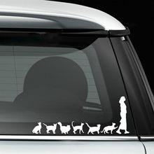 0f4b478ab2 Gatos Crazy Cat Lady Mulher Bonito Engraçado Para O Carro  Auto Carros Janela Vinyl Decal Adesivo Decalques DIY Decoração CT427
