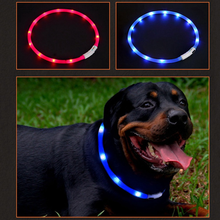 Pet Waterproof USB Rechargeable LED Dog Collar Night Safety Flashing Pet Supplies Dog Accessories For Puppy LED Collar Leash(China)