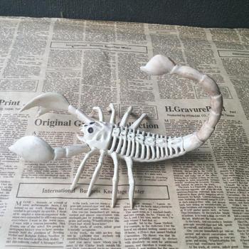 Utilería de Halloween tipos 3 encantadores tu fiesta decoración Animal casa esqueleto para destacados sólido que elige el Horror