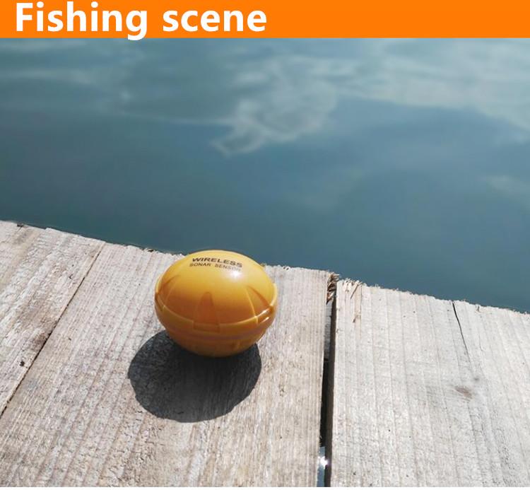 fishfinder (5)