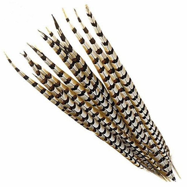 wholesale 12-72inch Natural Pheasant Tail Feathers Wedding Decorations Halloween Reeves Venery Pheasant Feathers Crafts plumes