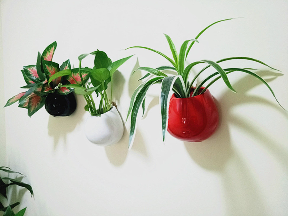 buy set of 3 ceramic wall planters wall mounted ceramic flower vase indoor wall gardens wall decoration from reliable