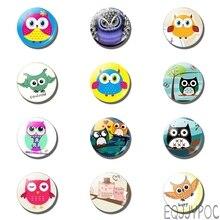 12pcs Cartoon Cute Owl 25MM 30MM Fridge Magnet Trendy Celtics Kid Glass Dome Home Decor Magnetic Refrigerator Sticker