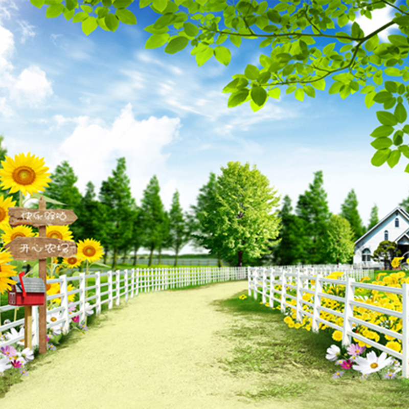 Beautiful Garden Plants White Fence Photography Backdrops Green Tree Sunflower Road Backgrounds for Photo Studio 150cm*200cm 600cm 300cm backgrounds garden beautiful sunshine photography backdrops photo lk 1566