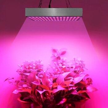 Fitolamp 45W تنمو ضوء مصباح ل النباتات Fito الصمام تنمو مصباح خيمة الطيف الكامل تنمو مربع داخلي أضواء نمو النبات تزايد مصابيح
