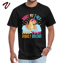 лучшая цена Adventure Time Tees Fun Men T-Shirt Sorry My T Rex Ate Your Sparkly Unicorn Tshirt Unique April FOOL DAY Sweatshirt Top Quality