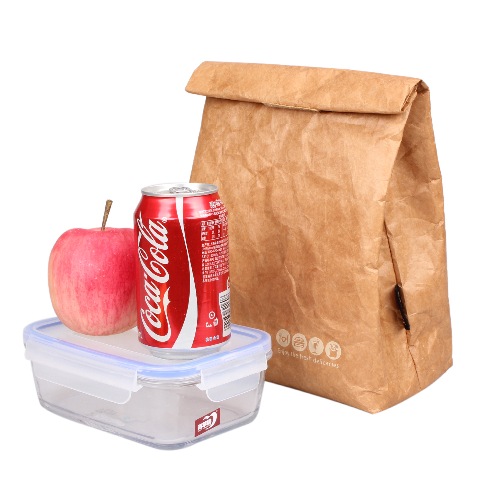 6L Ice pack kraft paper bag Reusable Box Sack Durable Insulated Thermal Lunch Bag Snack Cooler Picnic Container Men Ice bags