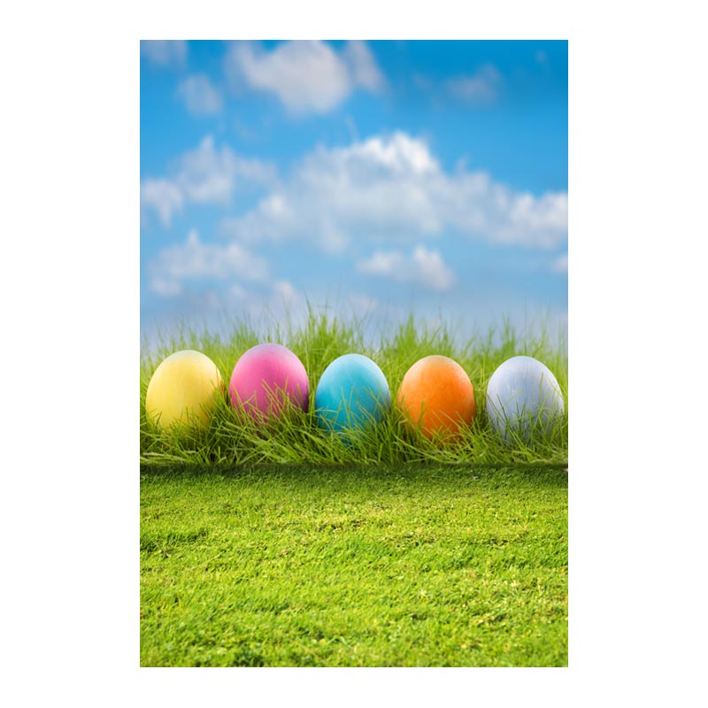 customize thin vinyl backdrops for photography background for photo studio children easter photography backdrops 5X8ft GE-091 mehofoto 5x7ft thin vinyl children photography background custom christmas photo backdrops for photo studio s 2105