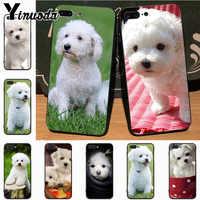 Yinuoda-funda de teléfono con diseño Animal Bichon frise dog para Apple iPhone 8, 7, 6, 6S Plus, X, 5S, 11pro, SE, 5C