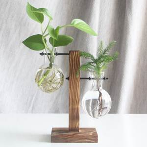 Plant-Vase Flower-Pot Tabletop-Decoration Bonsai Hydroponic Desktop Wooden Vintage-Glass
