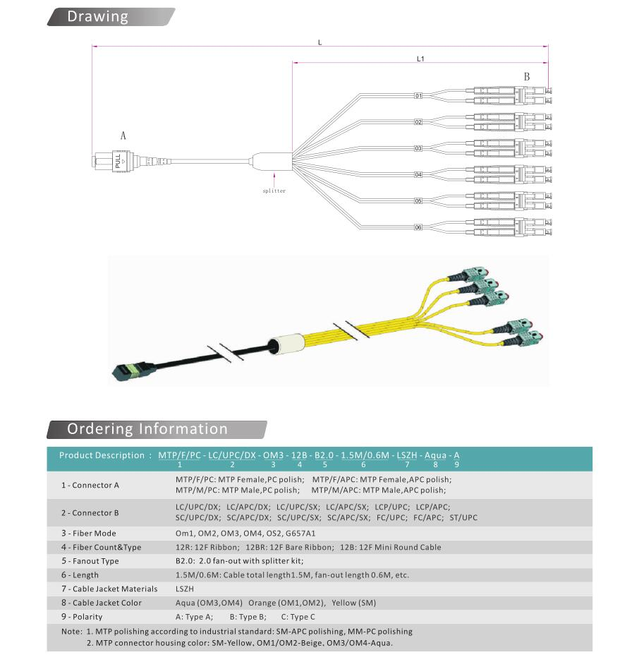 Free Shipping Mpo Female To 8cores Om3multimode40g 50 125 3m Plenum Fiber Optic Cable 40 Gigabit Ethernet Qsfp 40gbasesr4 Mtp Qq20170322124952 2 Qq20170322125031
