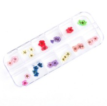 Nail Rhinestones Decorations 12 Colors 60pcs Real Nail Dried Flowers Nail Art Decoration DIY Tips with Case Big Flowers Sticker