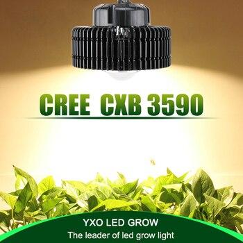 100 w CREE CXB3590 COB spettro completo led coltiva la luce per la serra idroponica Indoor grow tenda commerciale sviluppo di piante mediche