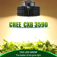100W CREE CXB3590 COB full spectrum led grow light for greenhouse hydroponic Indoor grow tent commercial medical plants growth