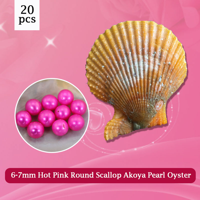 Surprise Pack 20pcs Hot Pink Pearls Oysters Scallop Akoya Oyster with Pearl 6-7mm Beads AAA Grade Free Shipping PJW289 free shipping 7mm aaa grade white akoya pearl necklace 6 07